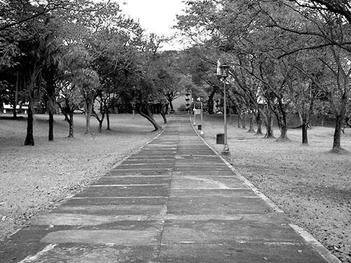 Lagoon walkway.