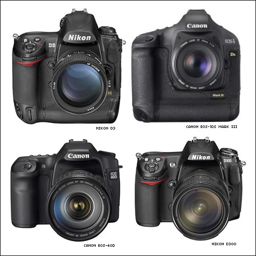 New digital SLRs for Q4 2007.
